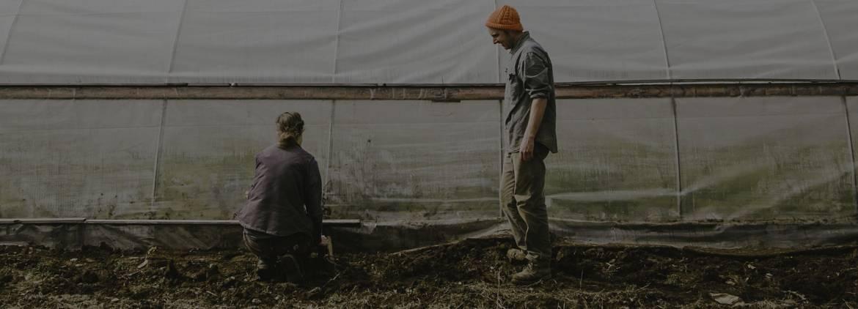 Maine-Farm-Listing-3.jpg