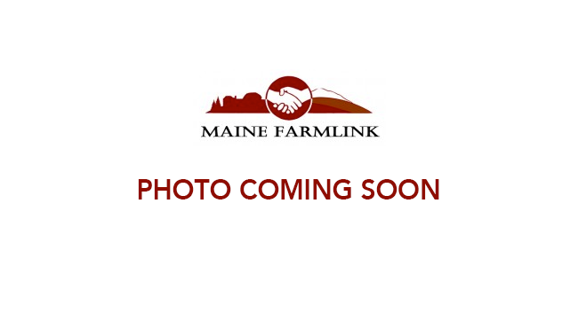 Maine-Farmlink-Photo-Coming-Soon.png