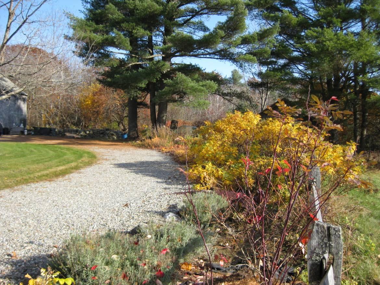 Fall-Driveway.jpg