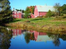 the_farm_and_pond.jpg