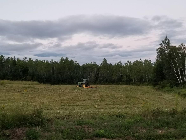 Cheviot-mowed-fieldeast-side.jpg