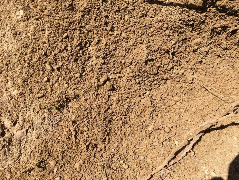 Soil-GMR.jpg