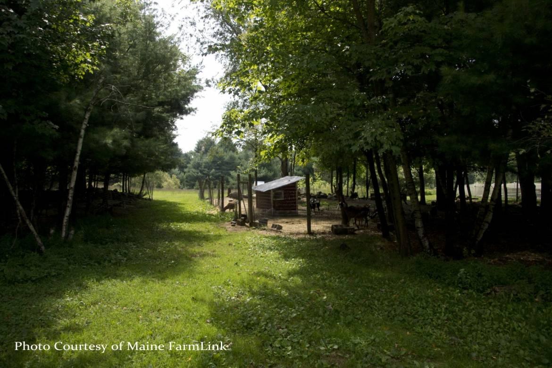 Ossinger-Kathy-Maine-FarmLink-1.jpg