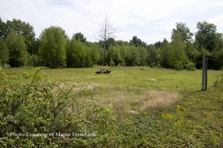 Ossinger-Kathy-Maine-FarmLink-11.jpg