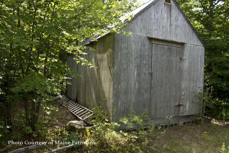 Ossinger-Kathy-Maine-FarmLink-12.jpg