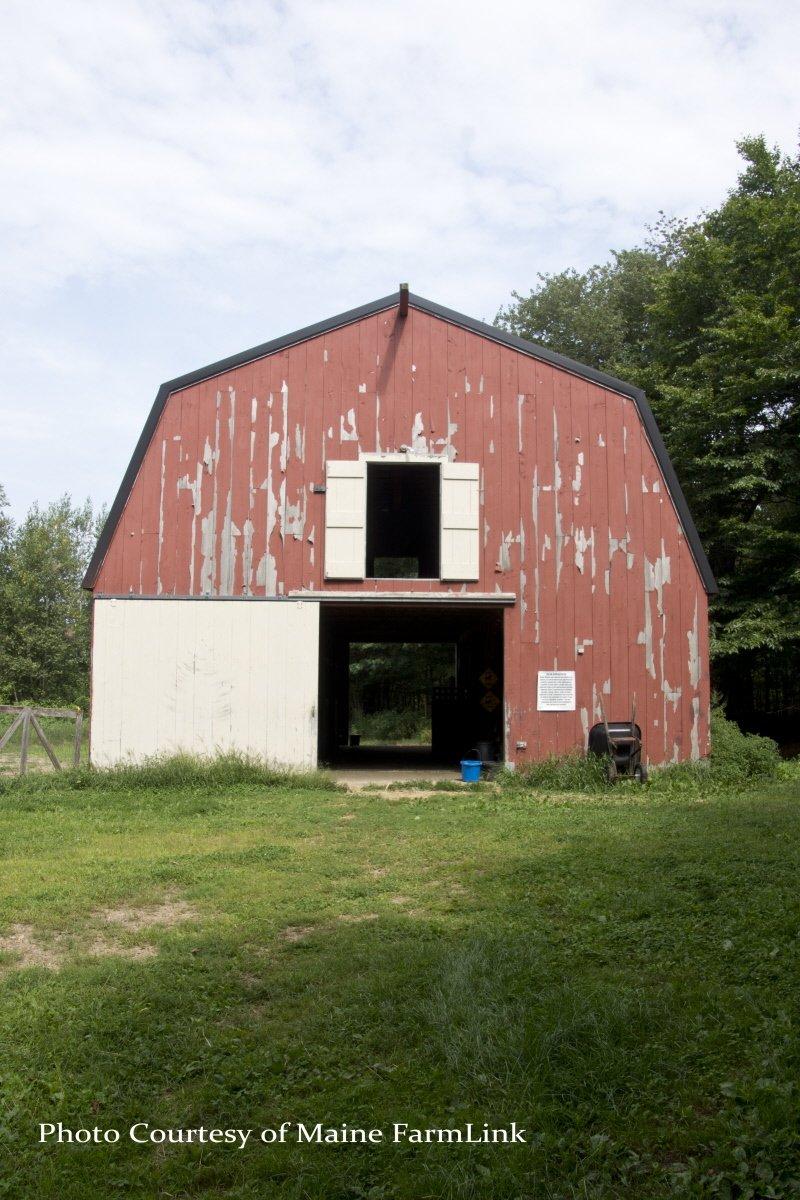 Ossinger-Kathy-Maine-FarmLink-2.jpg
