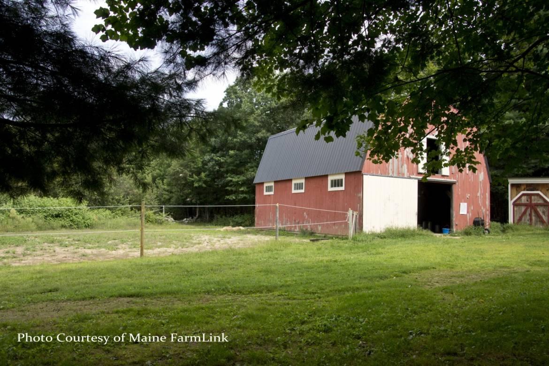 Ossinger-Kathy-Maine-FarmLink-7.jpg