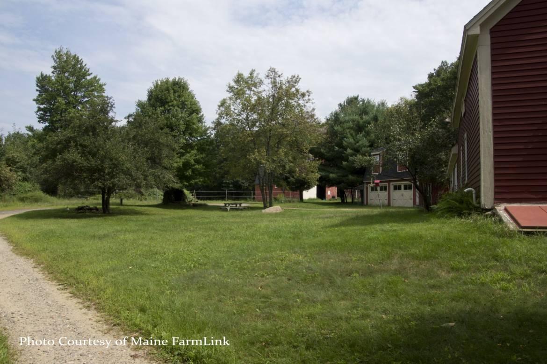 Ossinger-Kathy-Maine-FarmLink-8.jpg