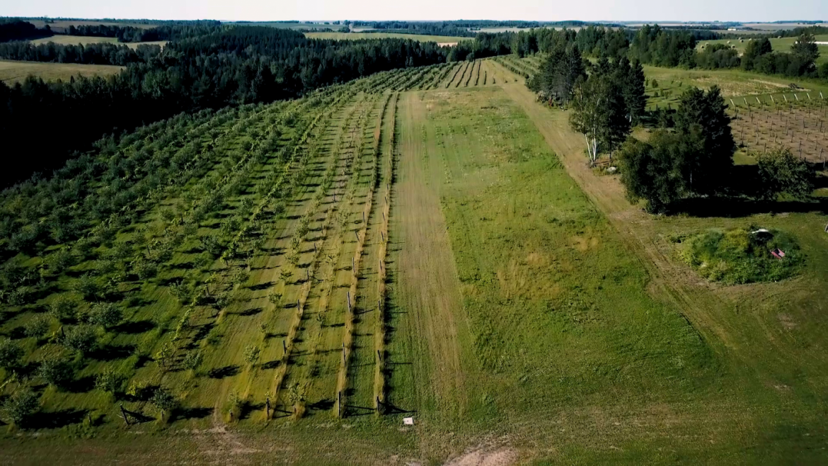 armstrong-farms-drone-short.mp42019-04-25-14-45-33.956-e1580824423911.png