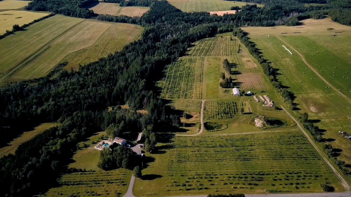 armstrong-farms-drone-short.mp42019-04-25-14-45-53.314-e1580824453504.png