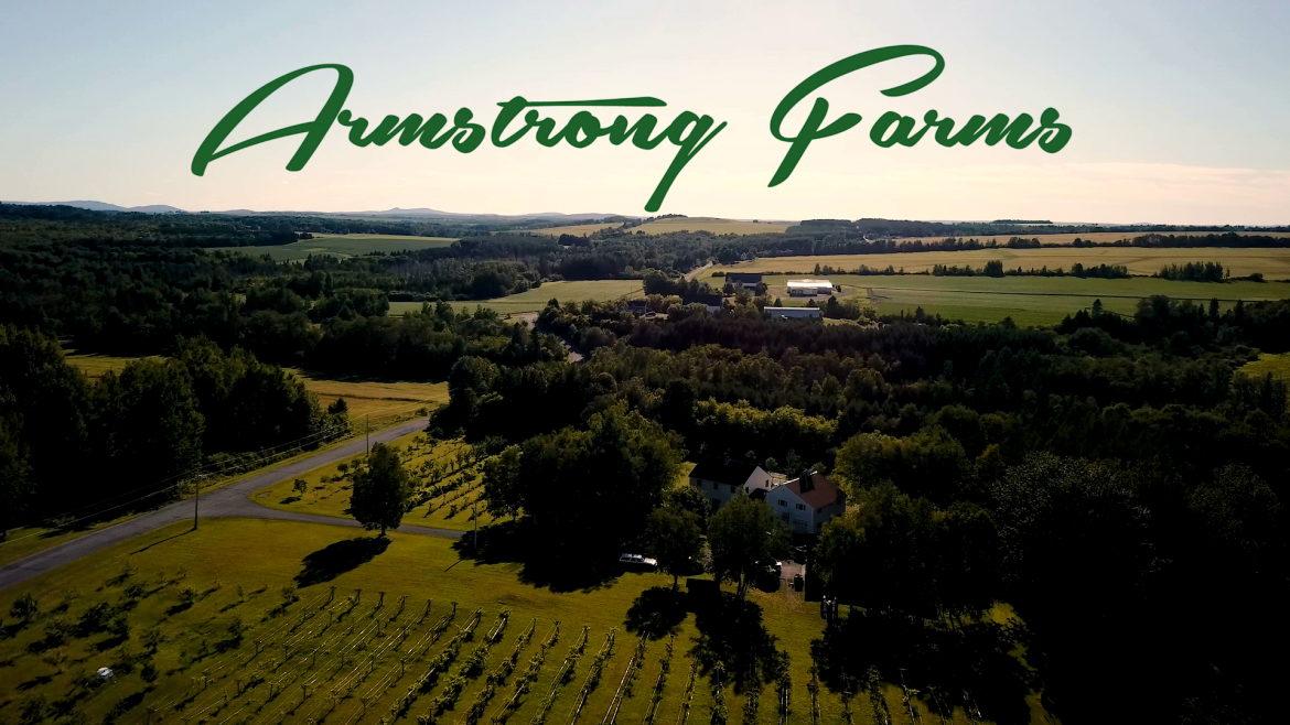 armstrong-farms-drone-short.mp42019-04-25-14-47-45.816.png