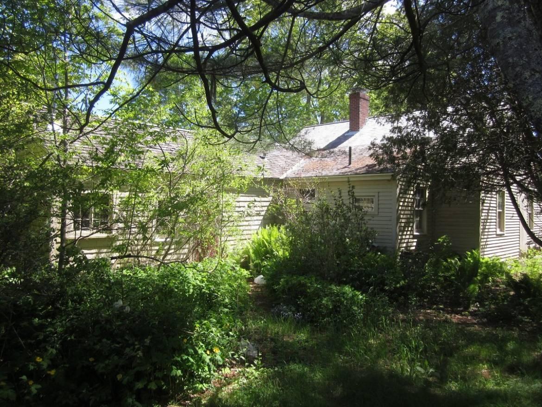 Christy-Hill-Farm-6.jpg